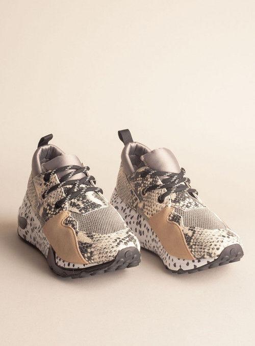 Steve Madden Sneaker Serpiente